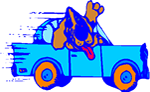 Cartoon of a basset hound in a bright blue car.