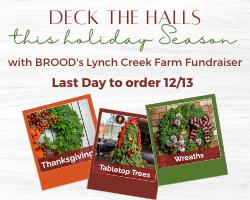 Website Lynch Creek Fundraiser
