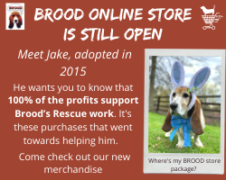 Brood April Store Graphic