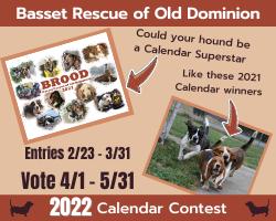 Website BROOD Calendar 2022 Contest