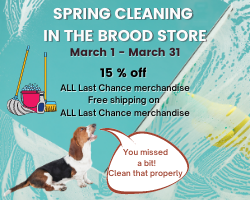 Website Spring Cleaning in the Brood Store