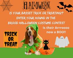 Website BROOD Halloween costume contest